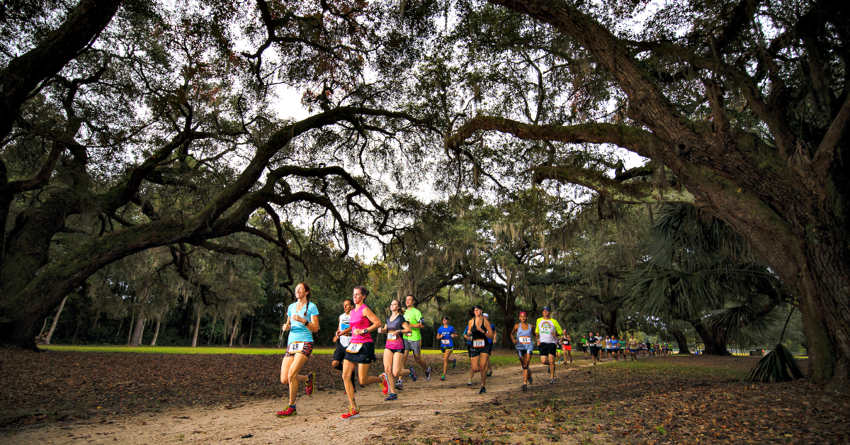 Participants running on a trail under large Live Oaks during the Lowcountry Trail Half marathon & 5K