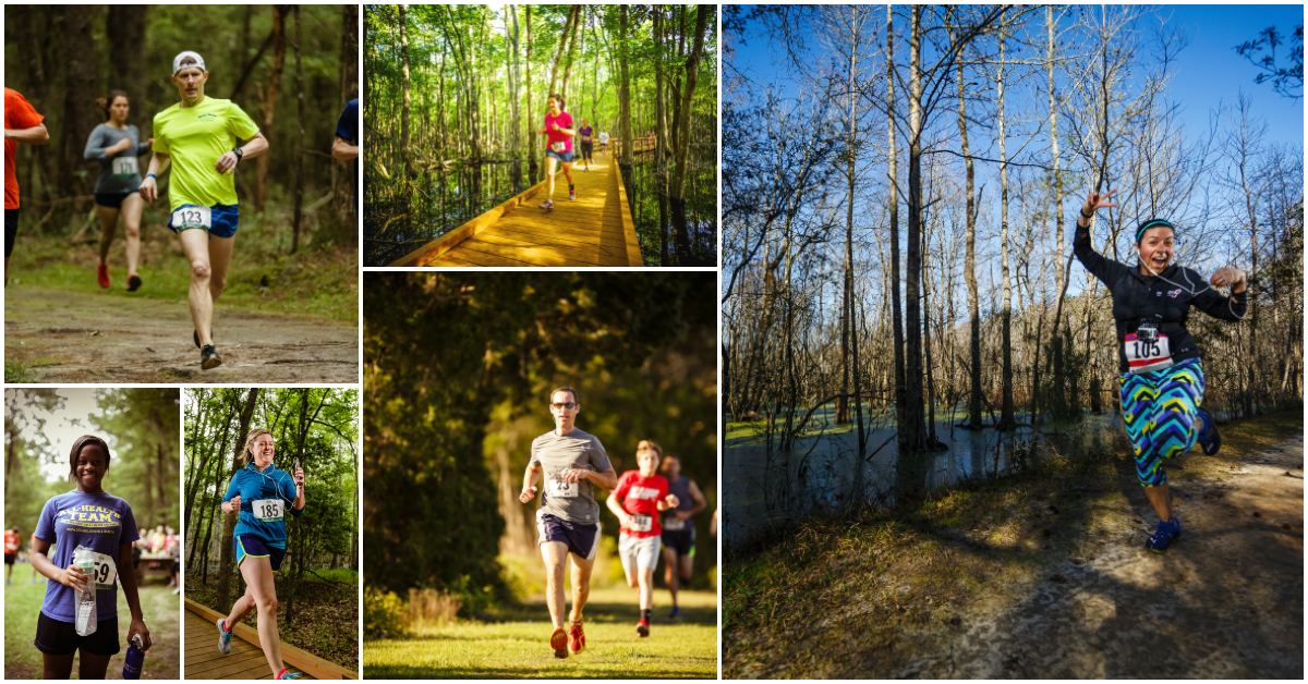 Collage of runners at Where the Wild Things Run
