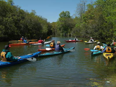 Group of people in kayaks on the water