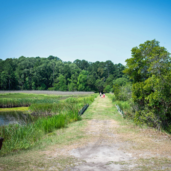 Trails at Caw Caw Interpretive Center