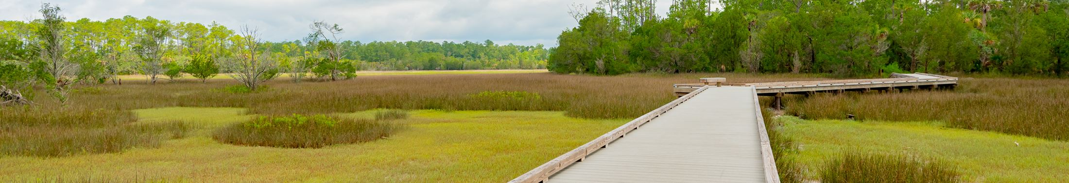 The boardwalk over the marsh at Palmetto Islands County Park