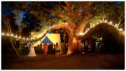 Wedding event venues charleston county parks and for Park towne