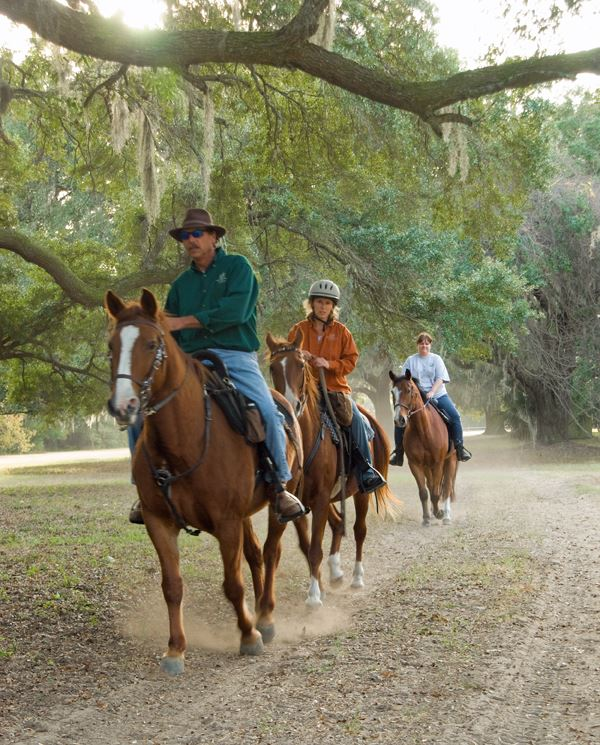 People riding the trails on horseback