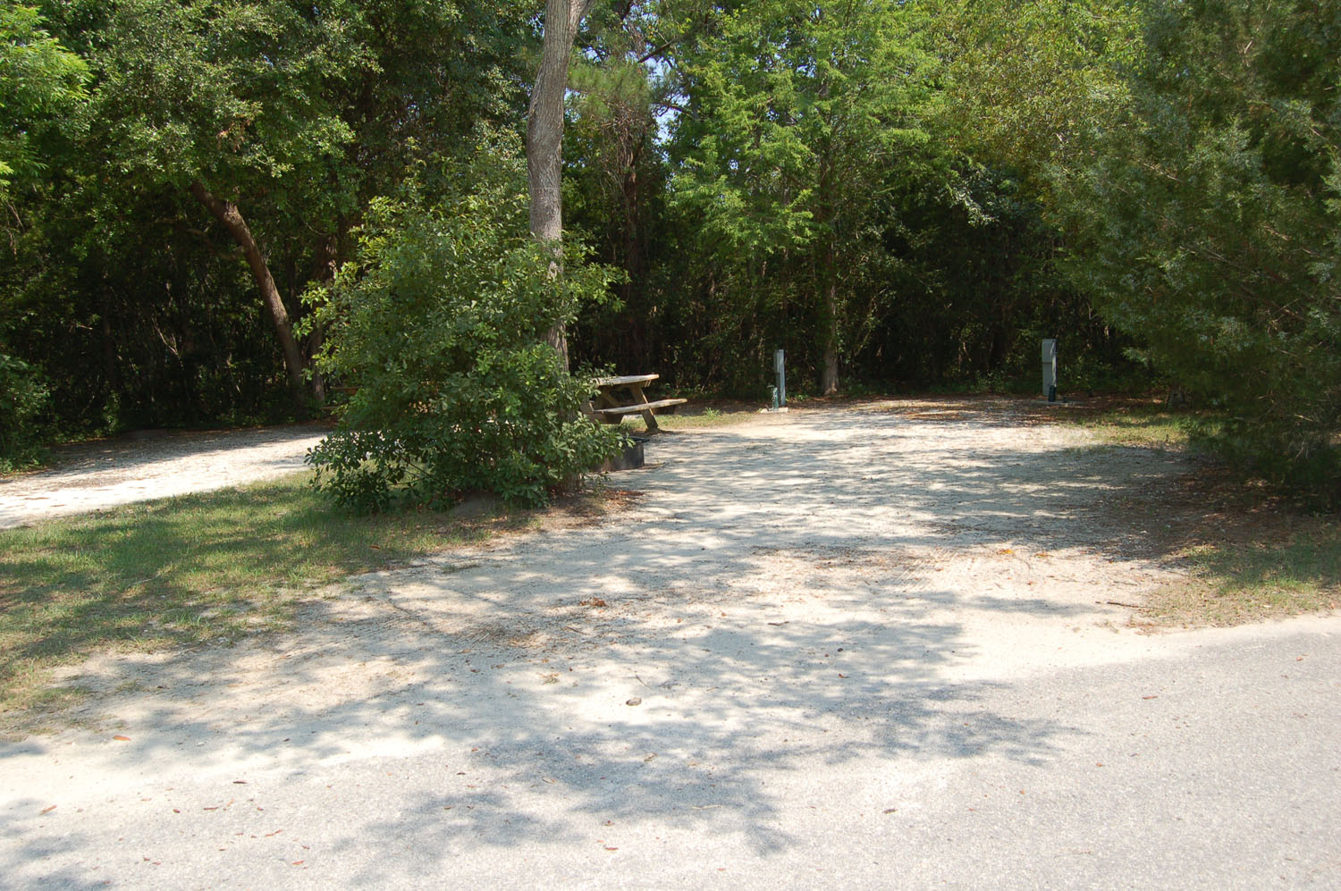 Image of Site #118 at the Campground at James Island County Park