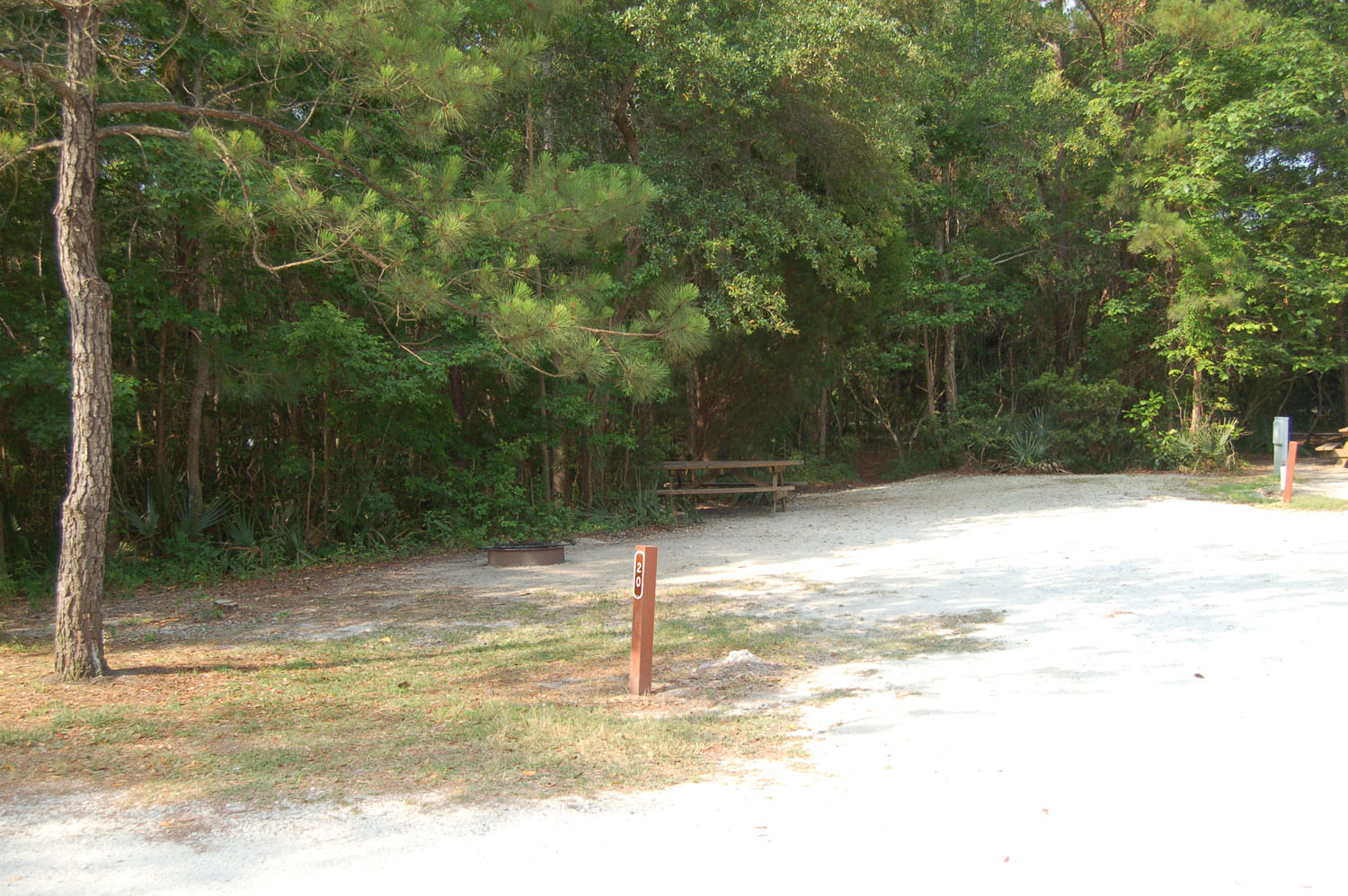 Image of campsite #20 at the Campground at James Island County Park