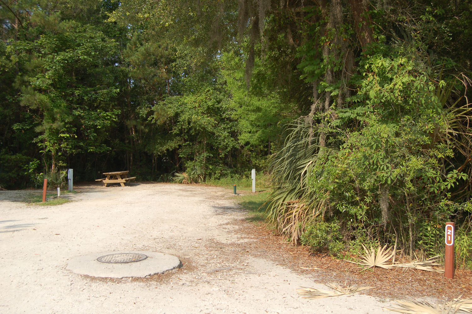Image of campsite #21 at the Campground at James Island County Park