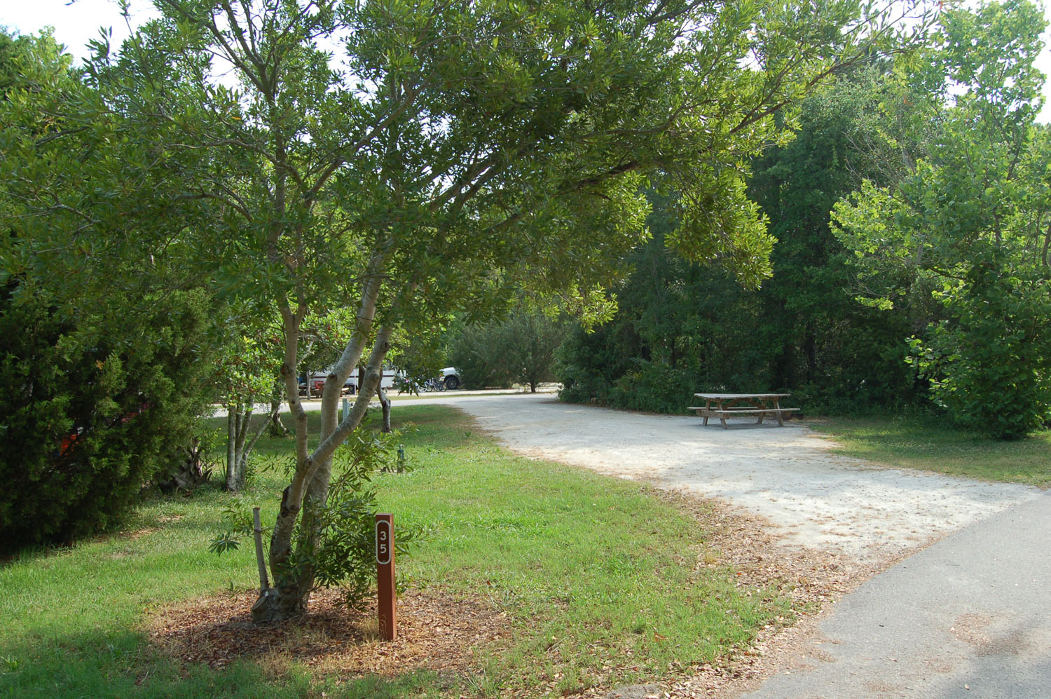 Image of campsite #35 at the Campground at James Island County Park