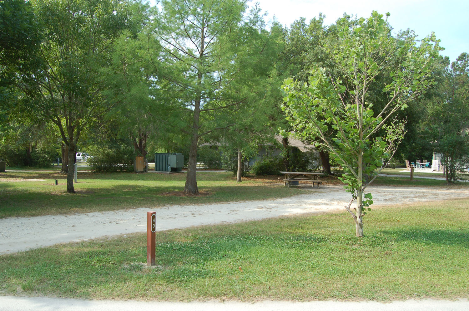 Image of campsite #40 at the Campground at James Island County Park