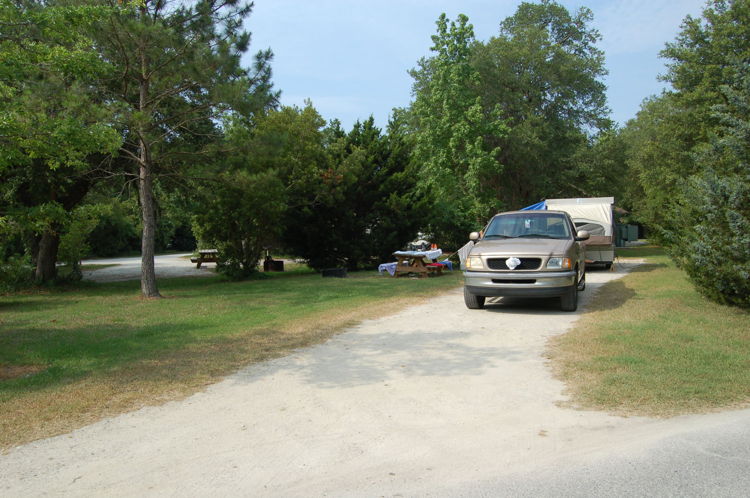 Image of campsite #42   at the Campground at James Island County Park