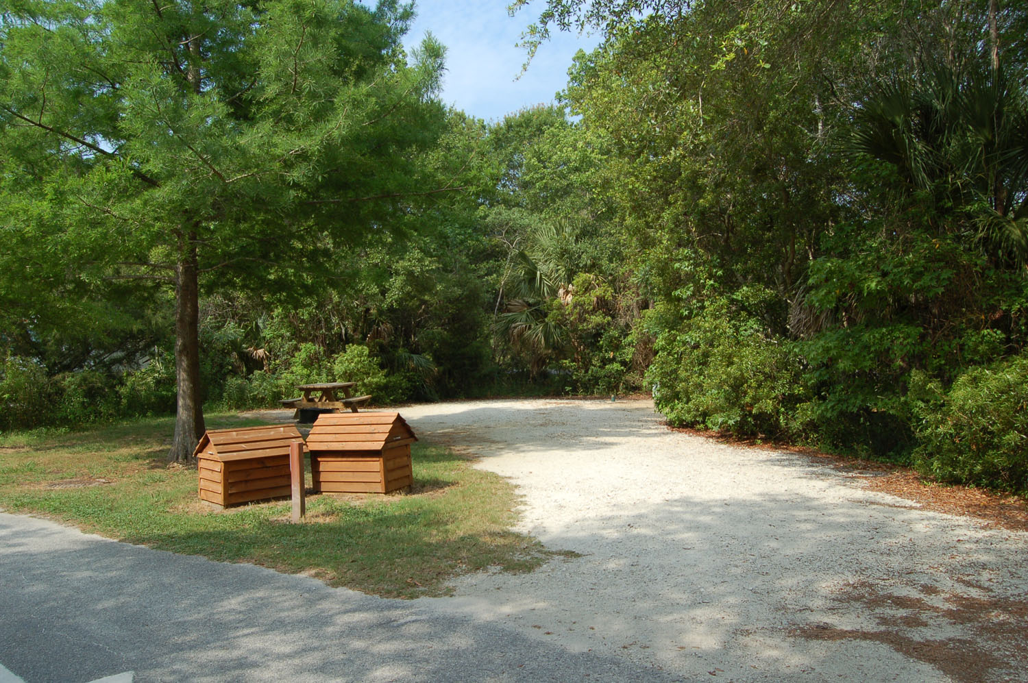 Image of campsite #44 at the Campground at James Island County Park