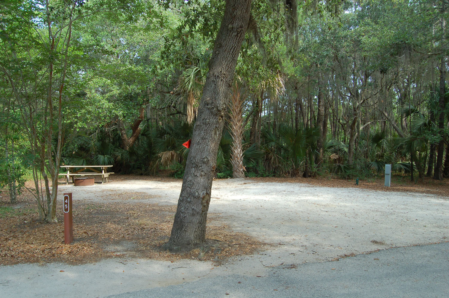 Image of campsite #45 at the Campground at James Island County Park