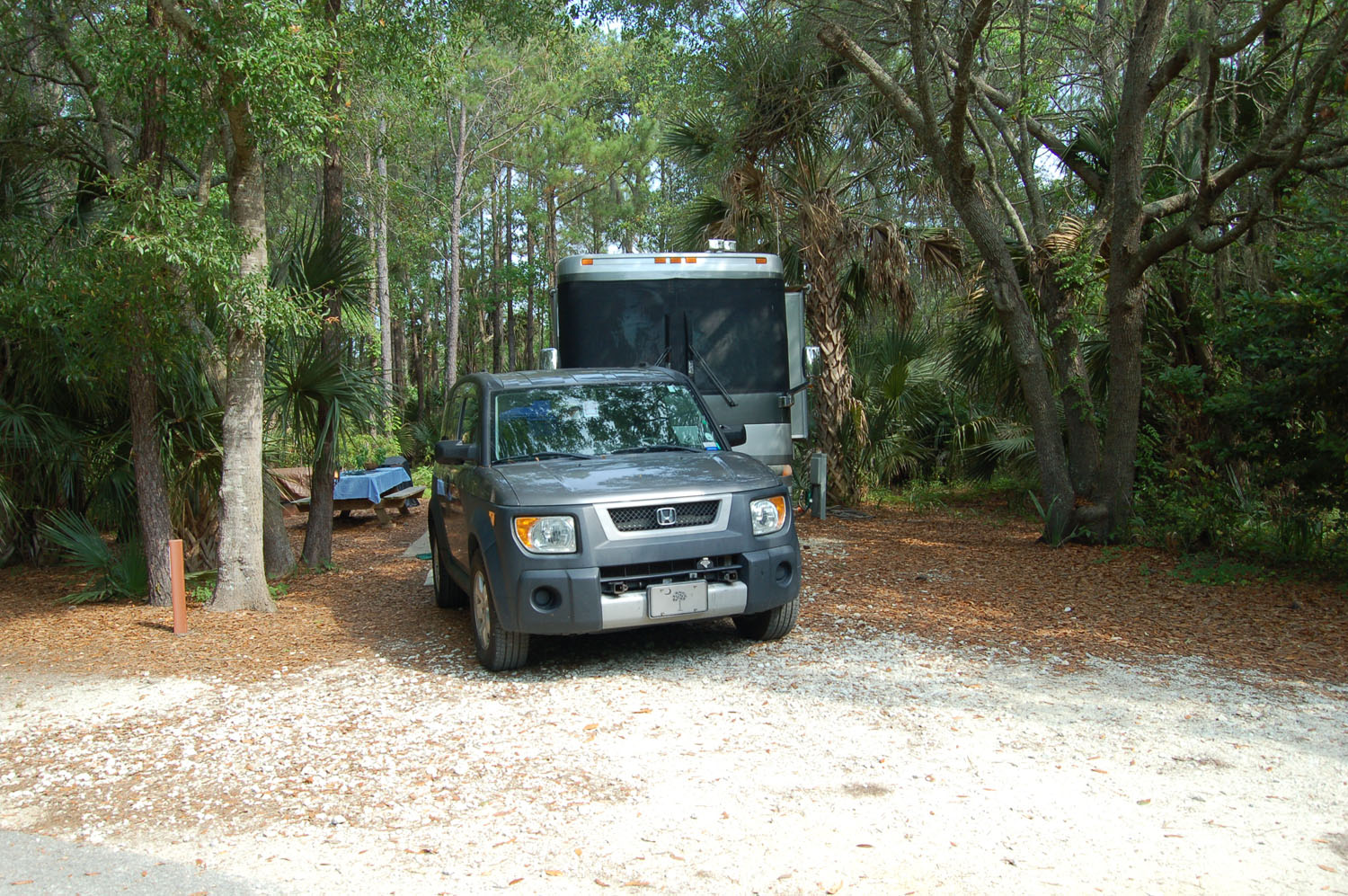 Image of campsite #46 at the Campground at James Island County Park