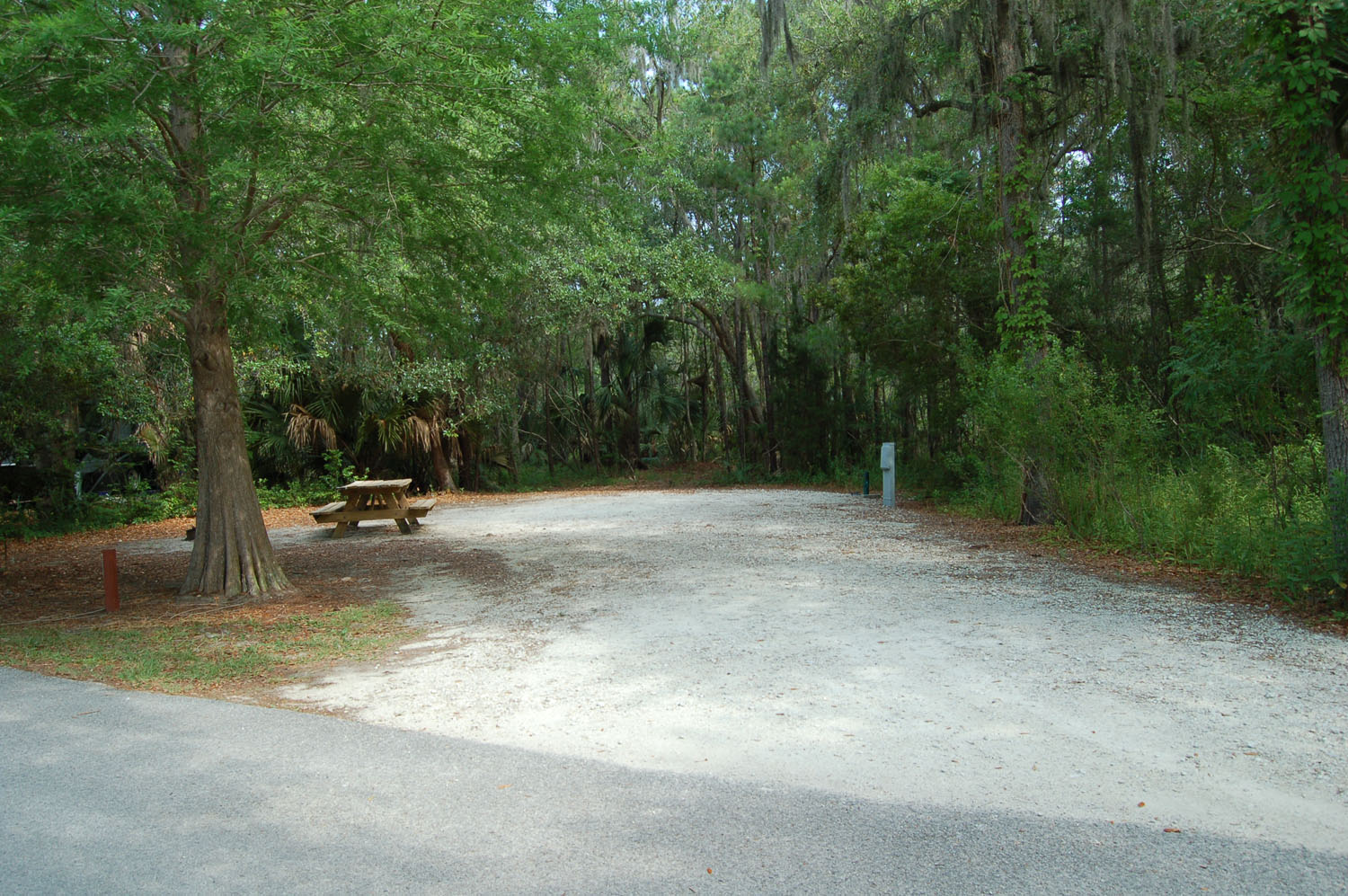 Image of campsite #47 at the Campground at James Island County Park