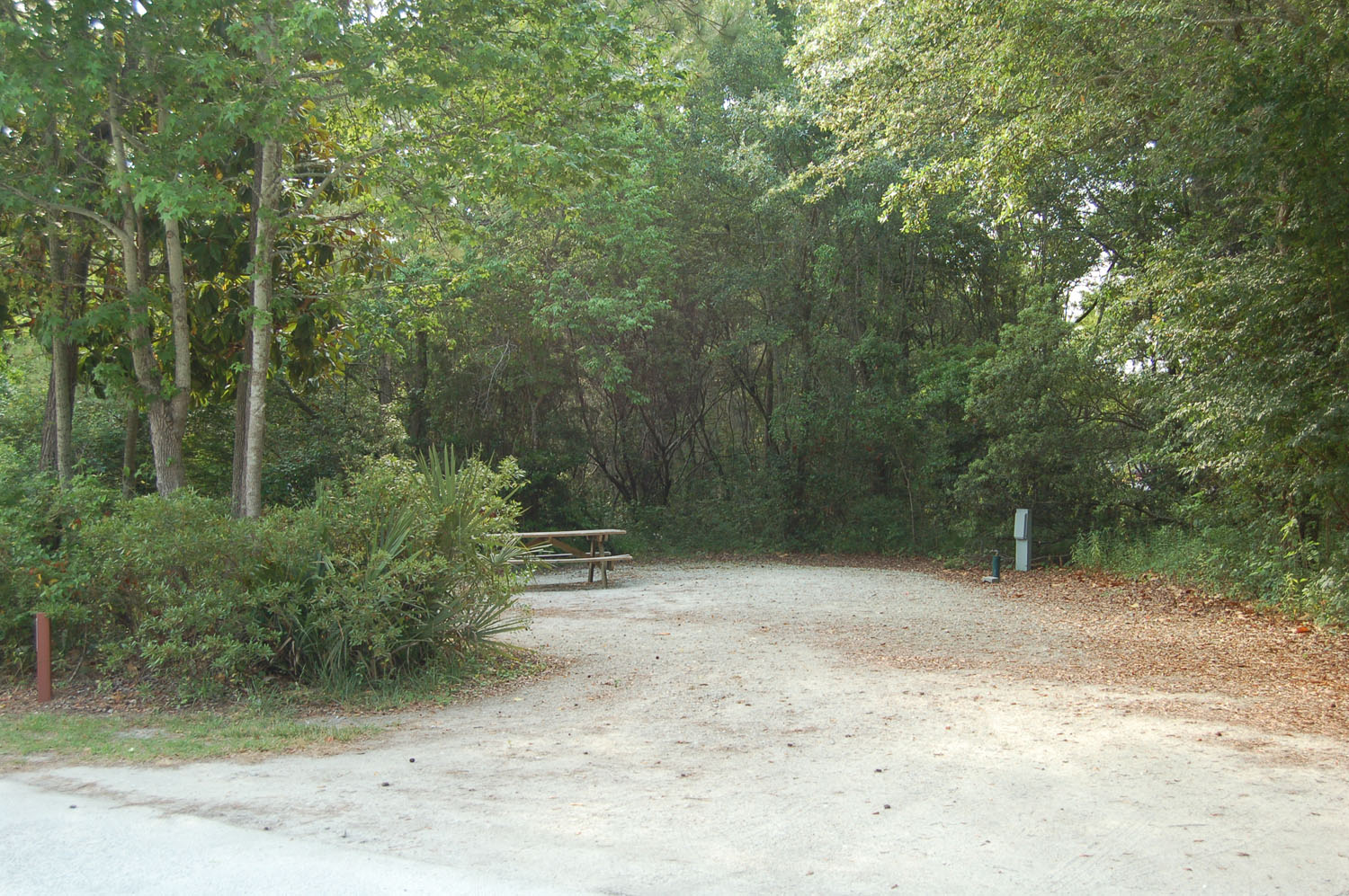 Image of campsite #5 at James Island County Park