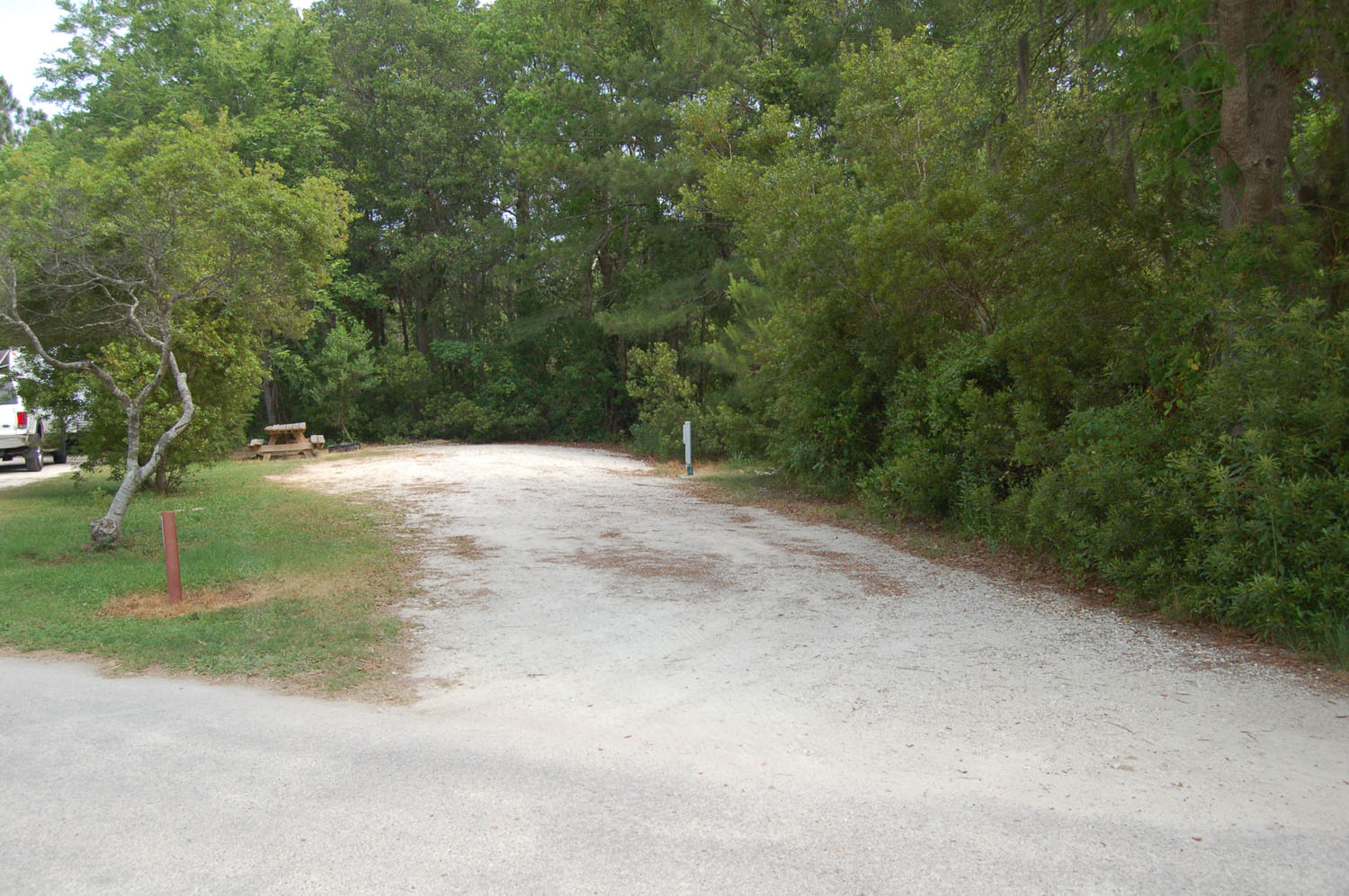 Image of campsite #52 at the Campground at James Island County Park