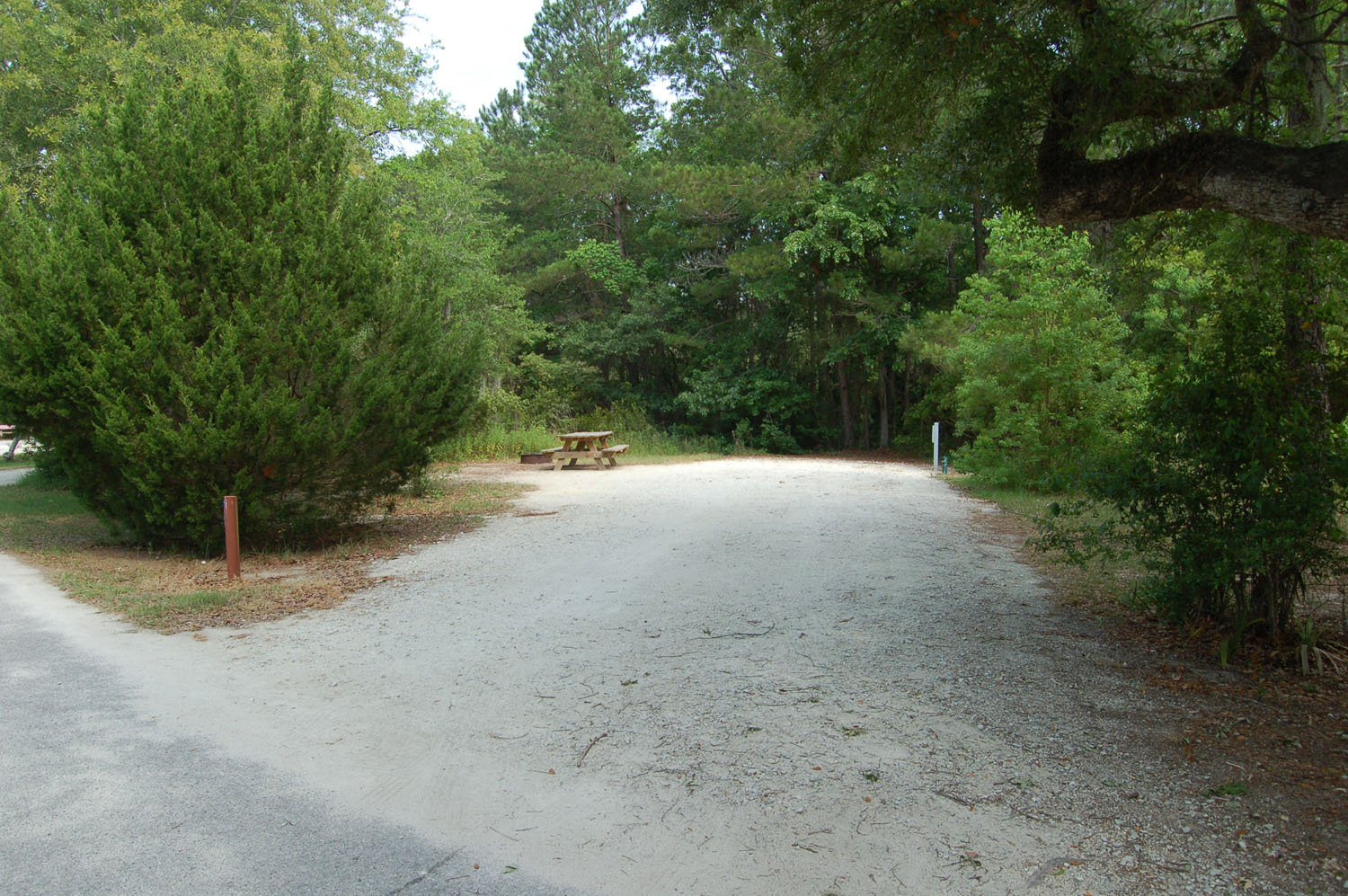 Image of campsite #53 at the Campground at James Island County Park