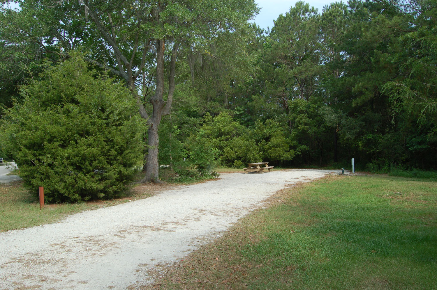 Image of campsite #54 at the Campground at James Island County Park