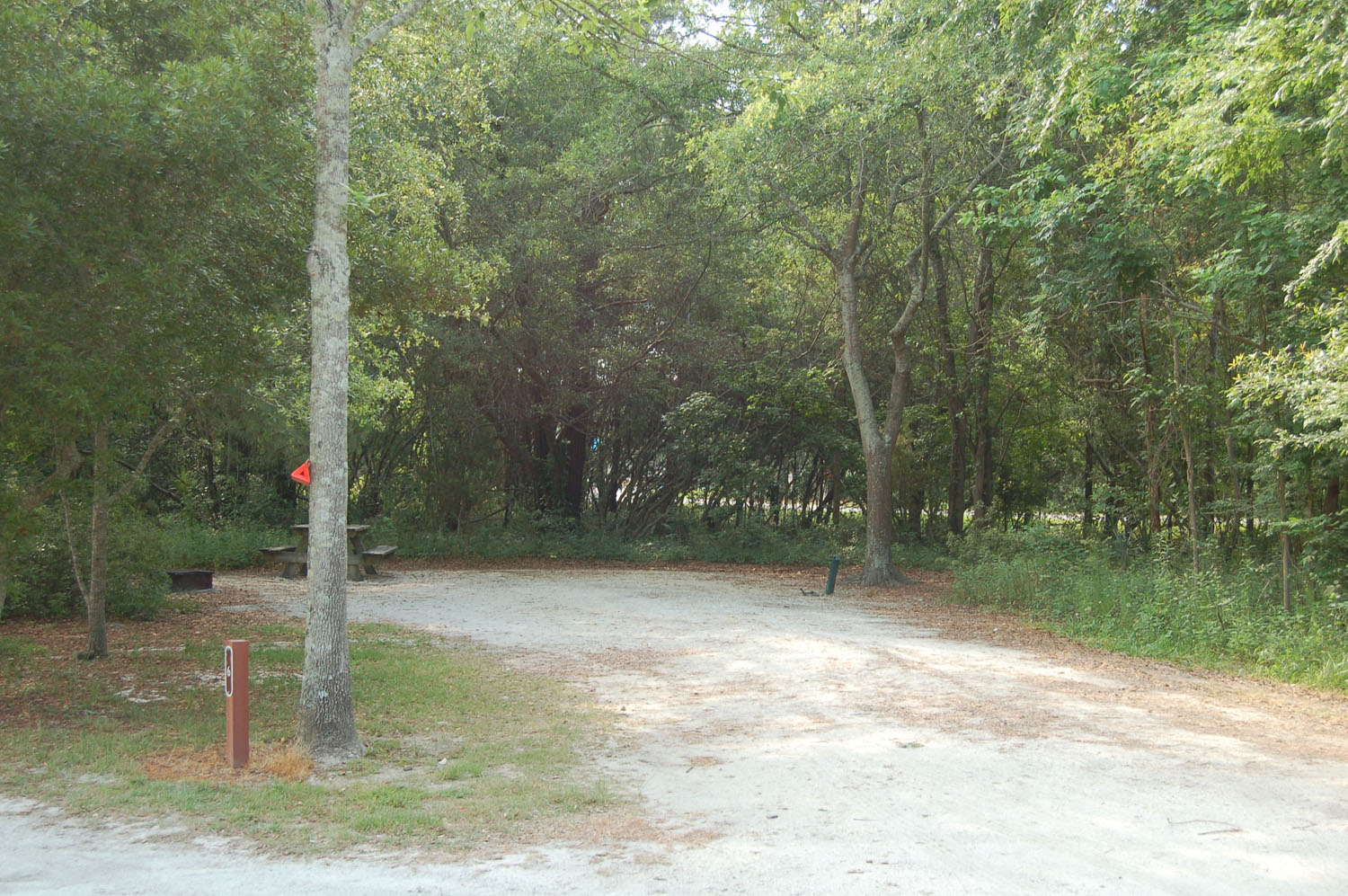 Image of campsite #6 at James Island County Park