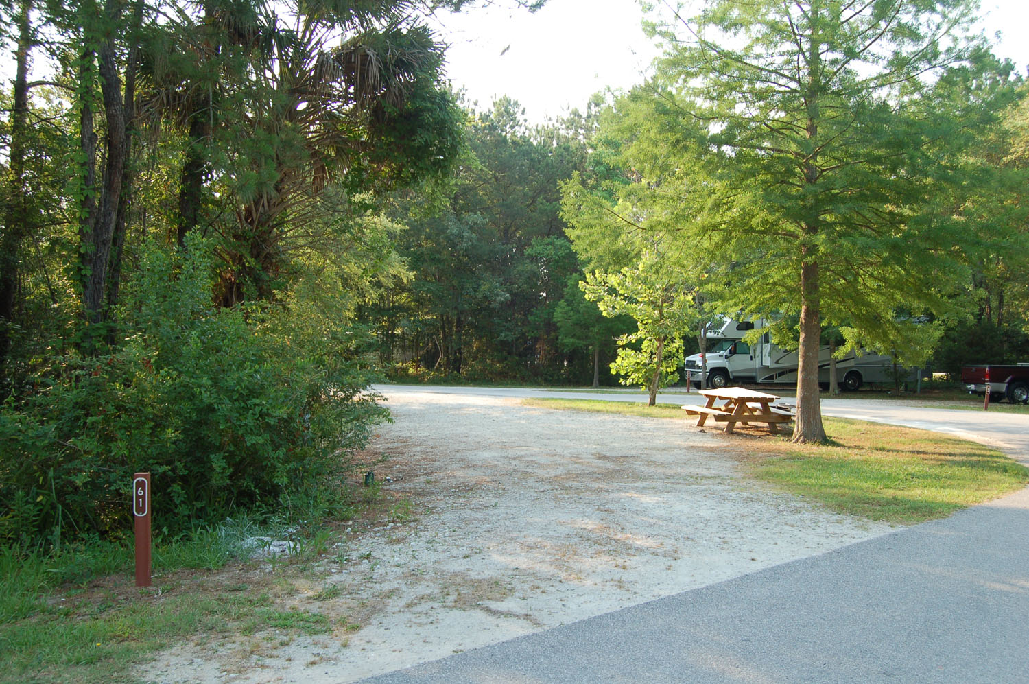 Image of campsite #61 at the Campground at James Island County Park
