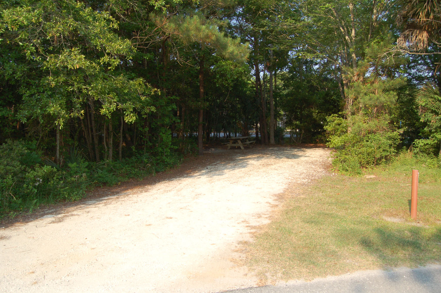 Image of campsite #63 at the Campground at James Island County Park