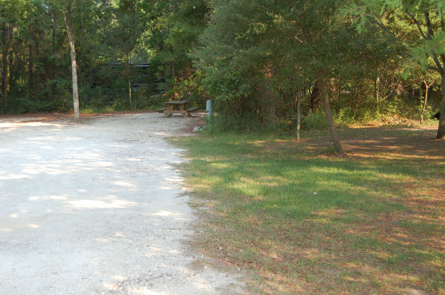 Image of campsite #67 at the Campground at James Island County Park