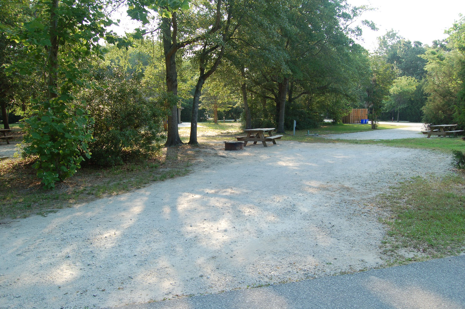 Image of campsite #70 at the Campground at James Island County Park