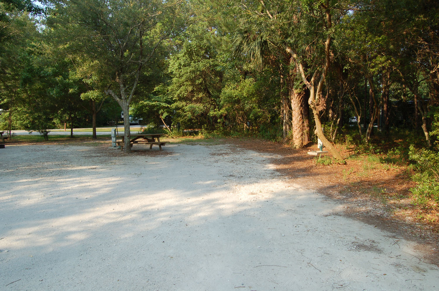 Image of campsite #72 at the Campground at James Island County Park