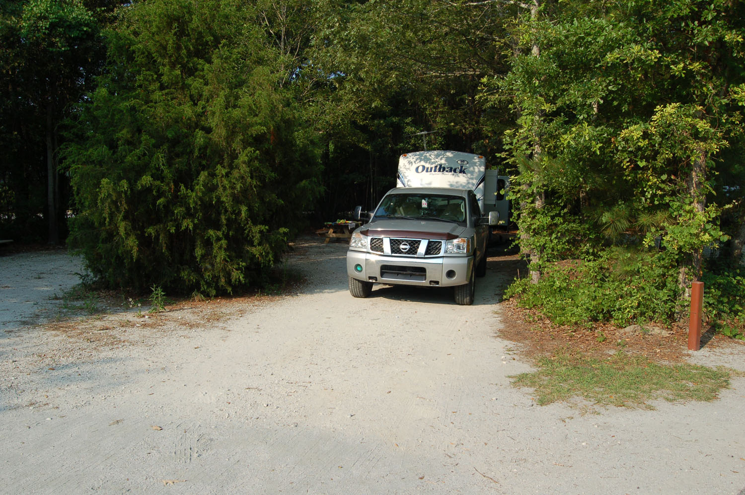 Image of Site #78 at the Campground at James Island County Park