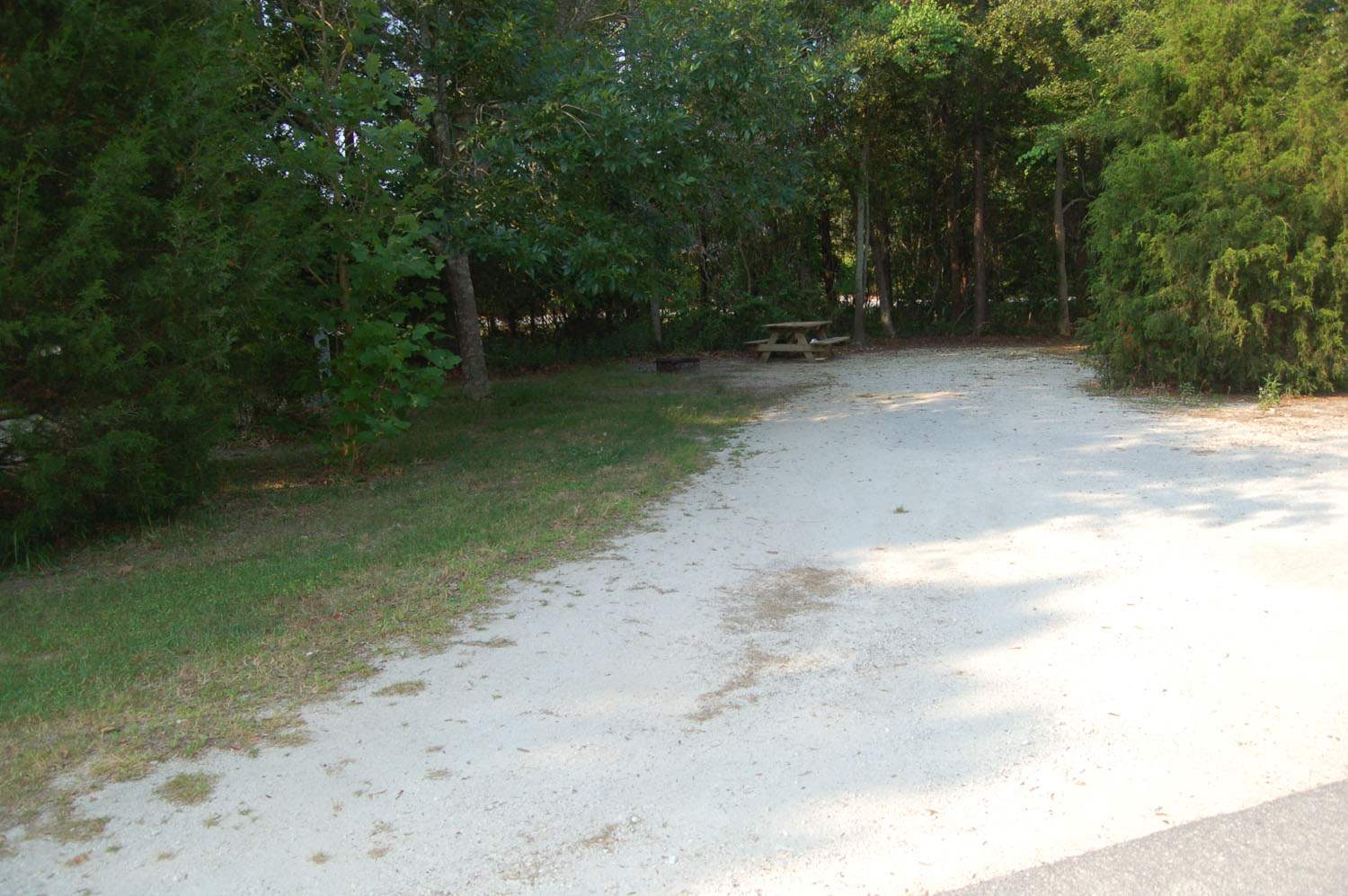 Image of Site #79 at the Campground at James Island County Park