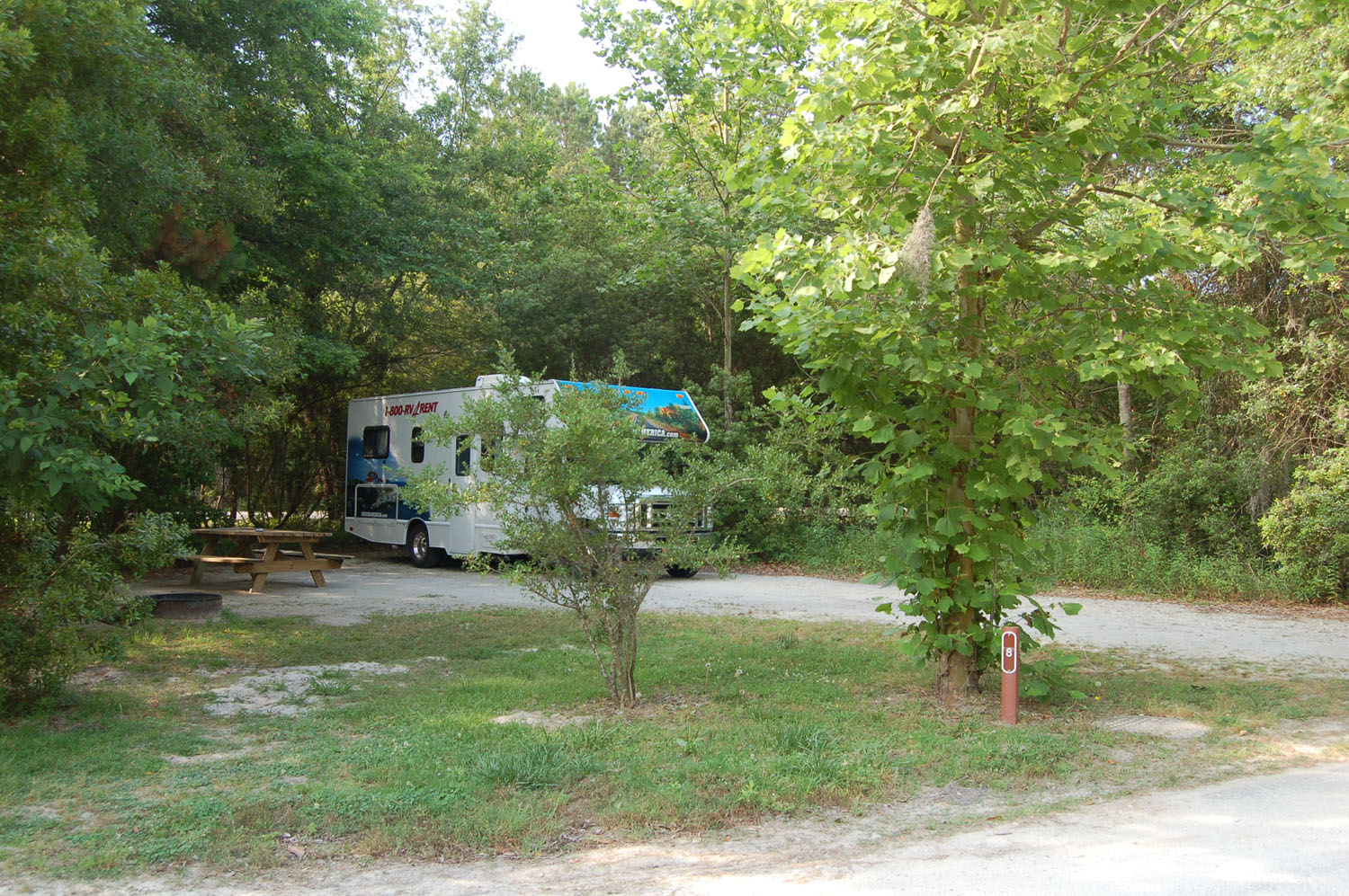 Image of campsite #8 at James Island County Park