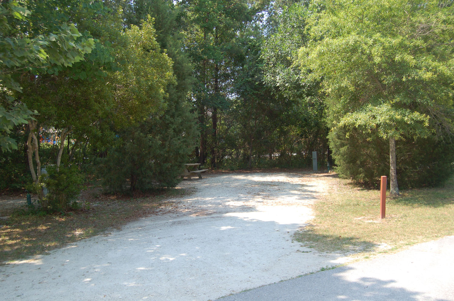 Image of Site #80 at the Campground at James Island County Park