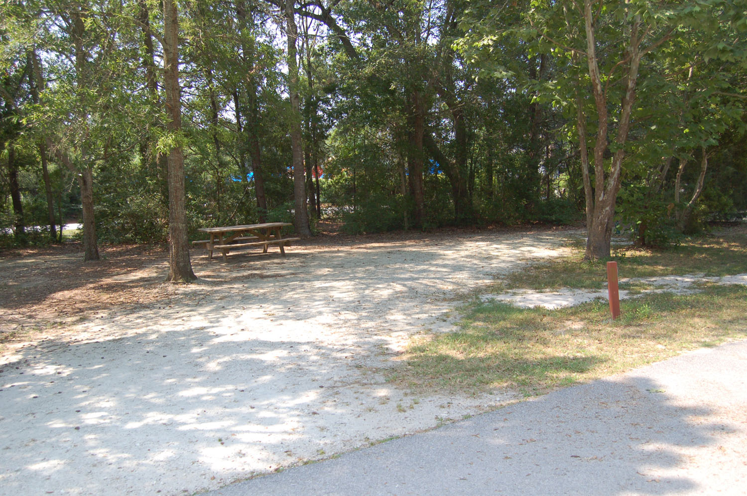 Image of Site #81 at the Campground at James Island County Park