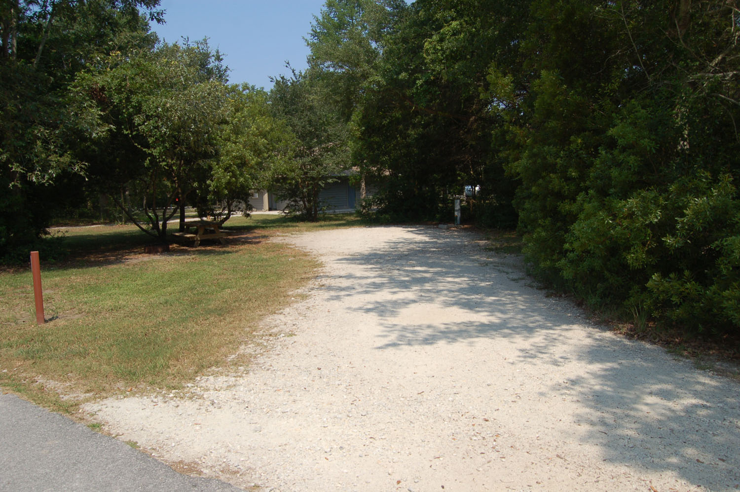 Image of Site #82 at the Campground at James Island County Park