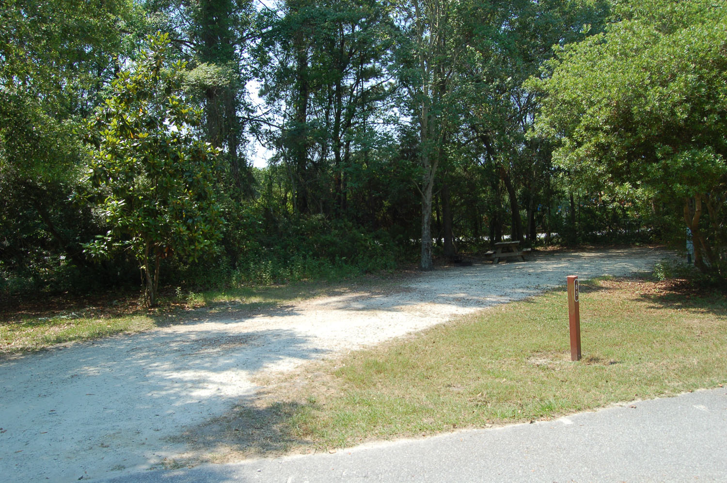 Image of Site #83 at the Campground at James Island County Park