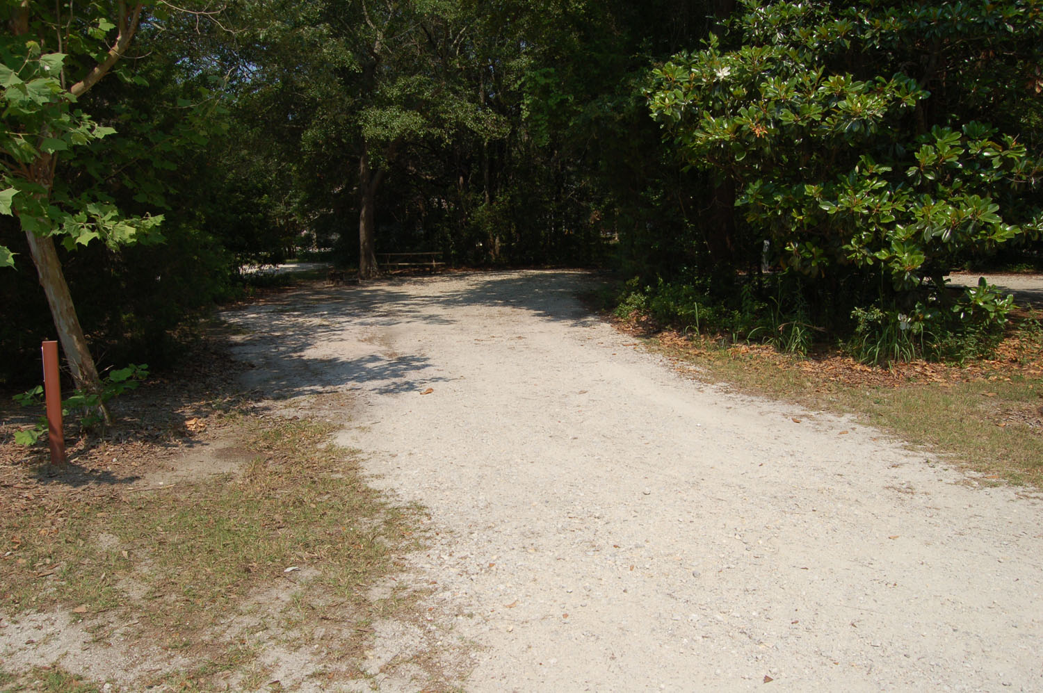 Image of Site #84 at the Campground at James Island County Park