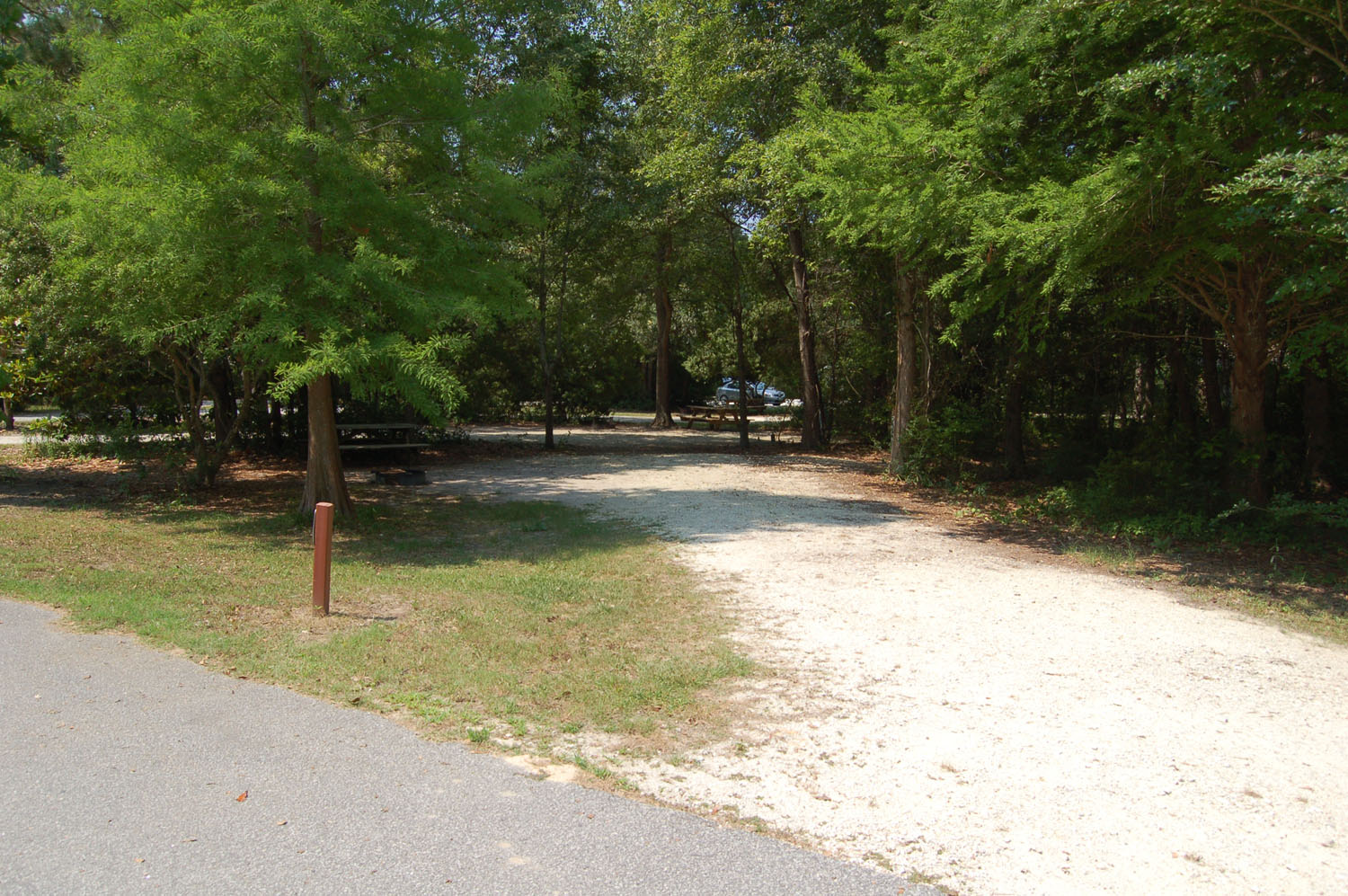 Image of Site #86 at the Campground at James Island County Park