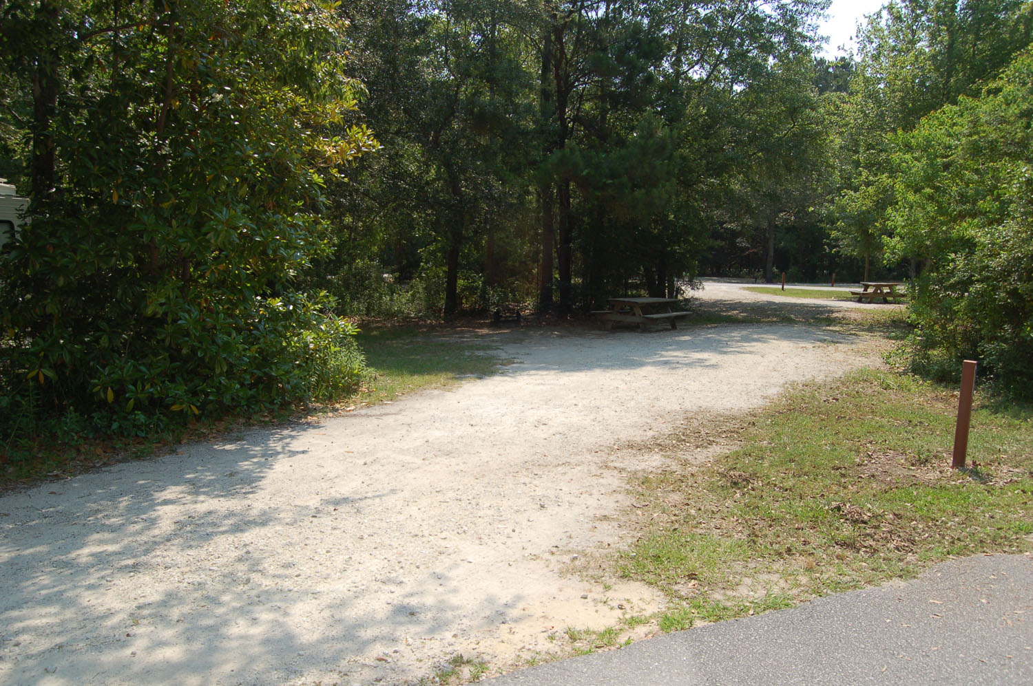 Image of Site #87 at the Campground at James Island County Park