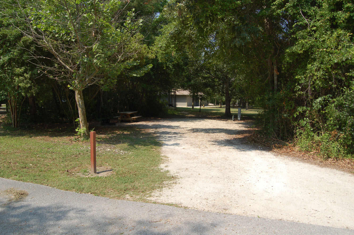 Image of Site #88 at the Campground at James Island County Park