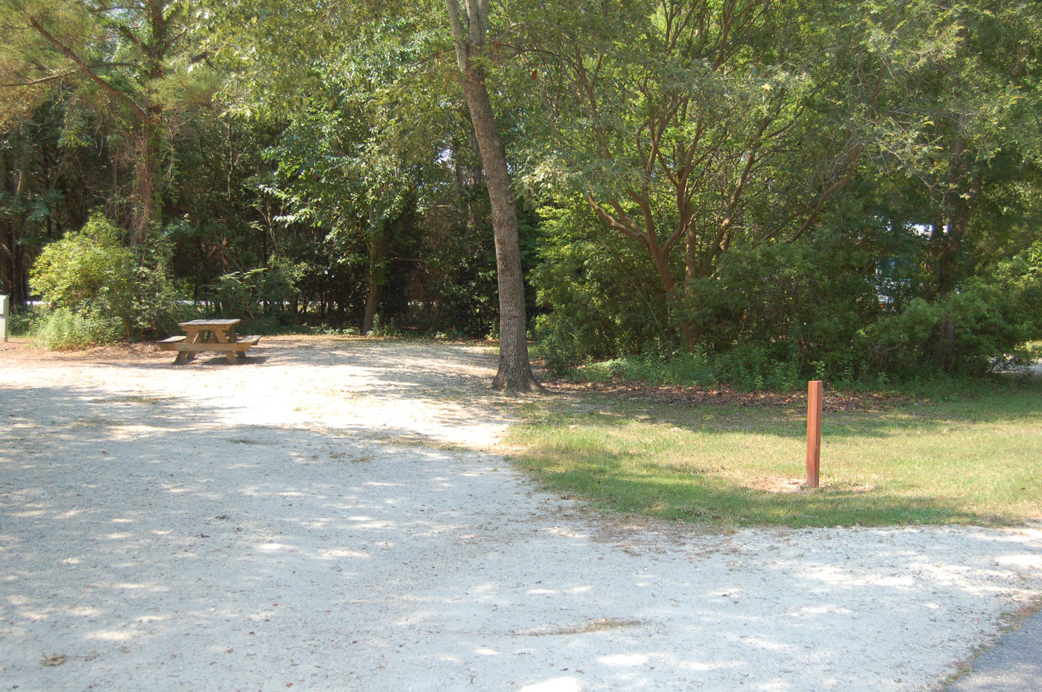 Image of Site #92 at the Campground at James Island County Park