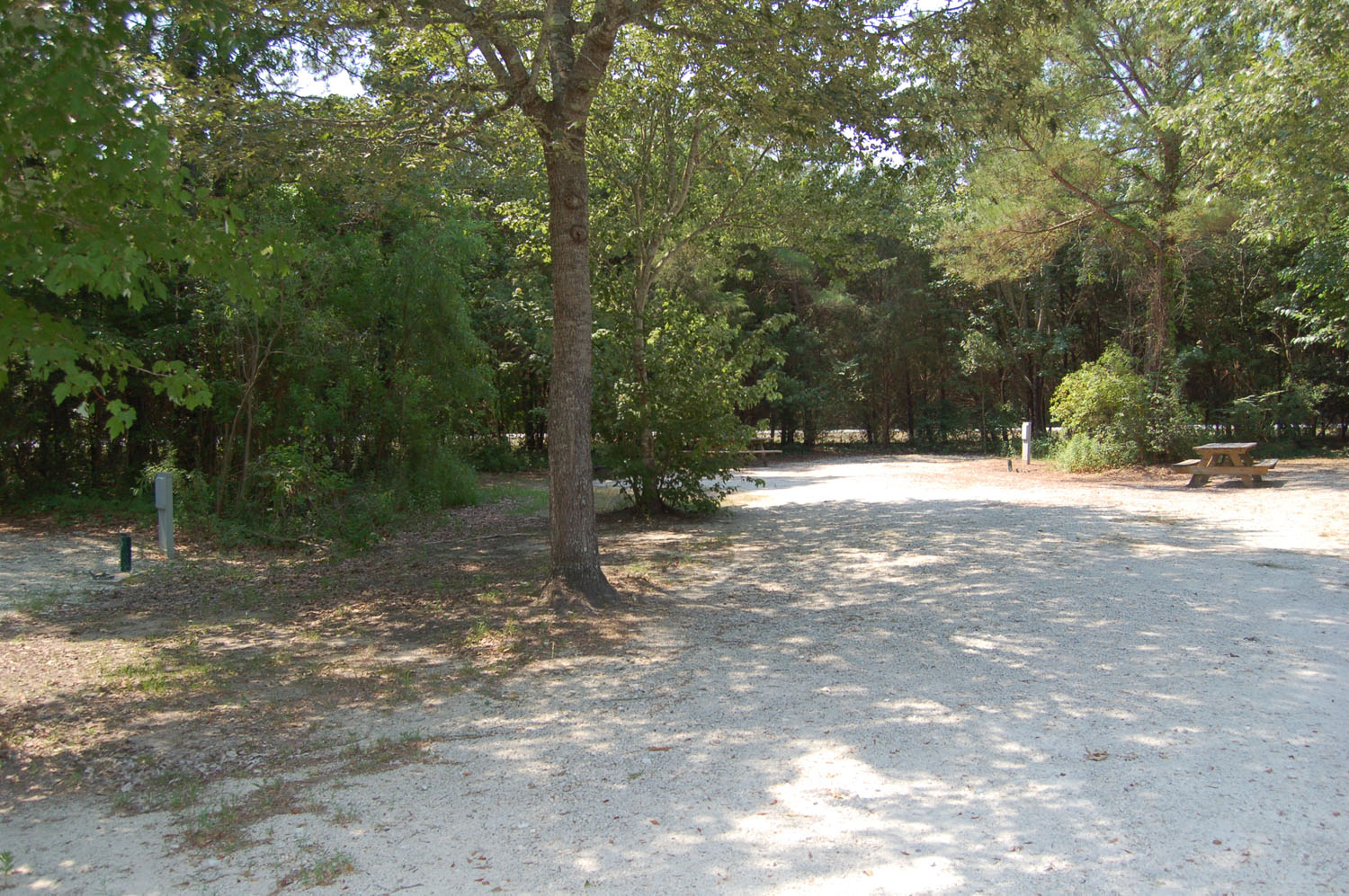 Image of Site #93 at the Campground at James Island County Park