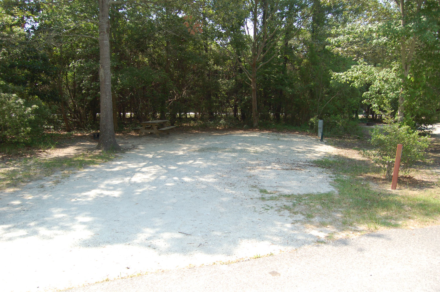 Image of Site #94 at the Campground at James Island County Park