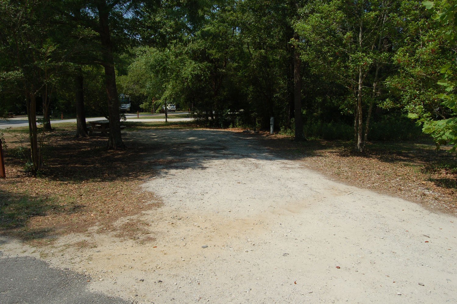 Image of Site #97 at the Campground at James Island County Park