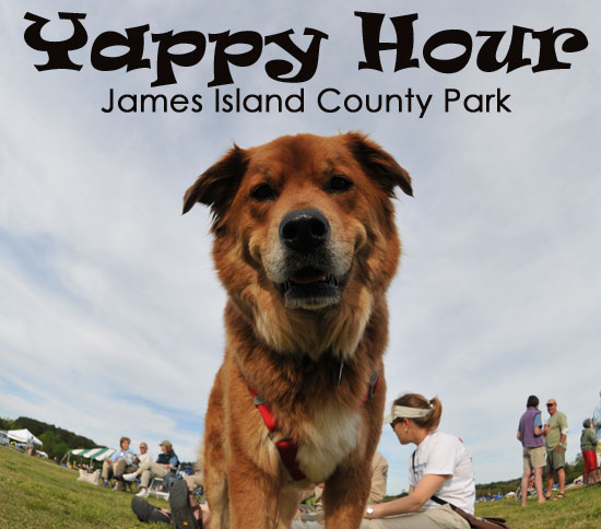 Yappy Hour at James Island County Park
