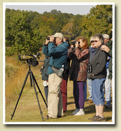 Image of birders at Caw Caw Interpretive Center