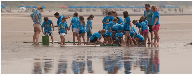 Image of an Enrichm Your Summer Camp Program at Kiawah Beachwalker Park