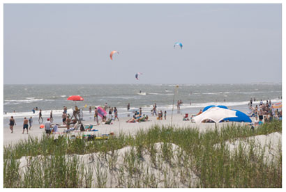 Image of the beach at Folly Beach County Park